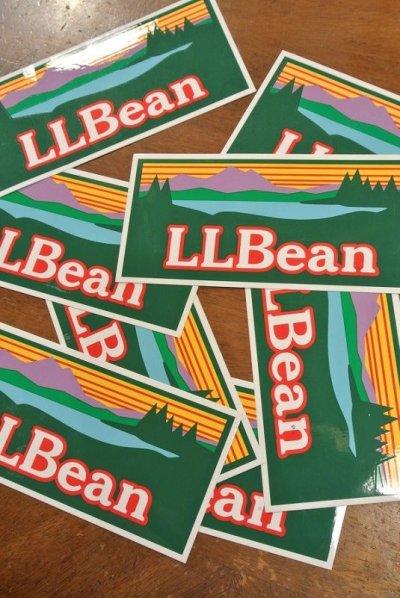 画像1: 【クリックポスト170円も可】L.L BEAN ビンテージロゴステッカー 17.8×8.4cm